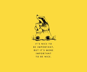 quote, hufflepuff, and yellow image