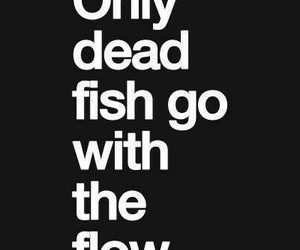 fishes, Mantra, and quotes image
