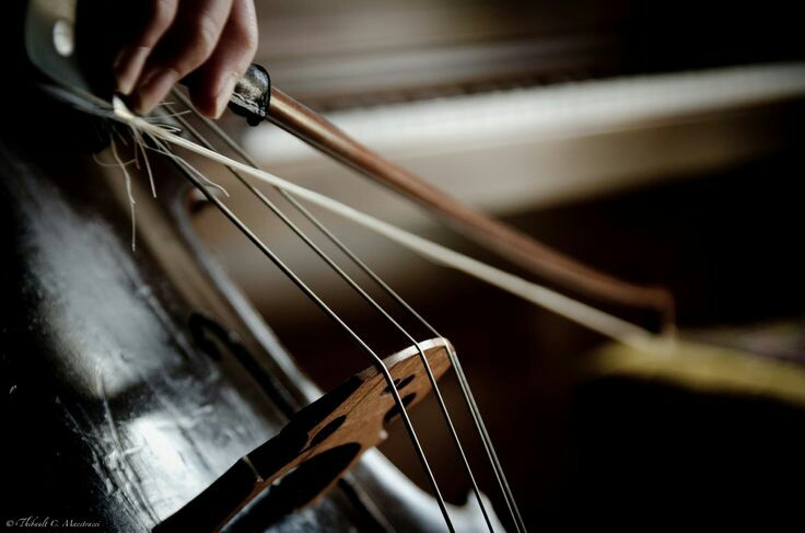 classical, hand, and music image