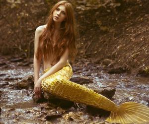 mermaid, fantasy, and fairytale image