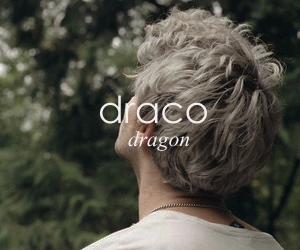 slytherin, draco, and draco malfoy image