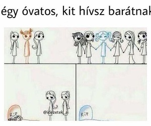 friends, love, and barát image