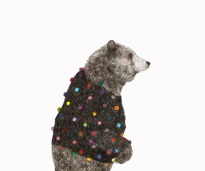 art, bear, and sweater image