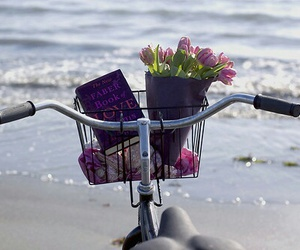 beach, flowers, and book image