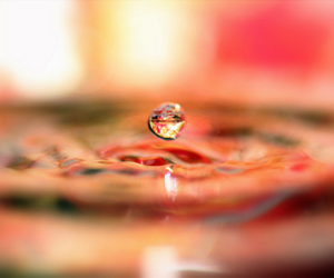 drop, photography, and pink image