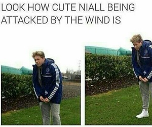 niall and 1d image