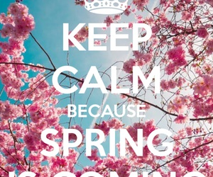 spring and keep calm image