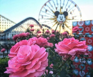 disney, flowers, and mickey mouse image