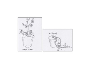 plants and drawing image