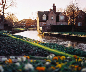 35mm, garden, and uk image