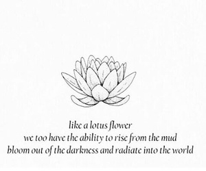 quote, flowers, and phrases image