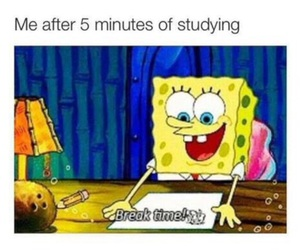 funny, spongebob, and school image