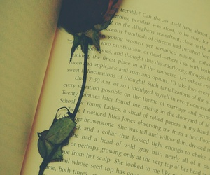book, flower, and lonely image