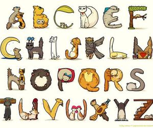 ABC, cat, and alphabet image