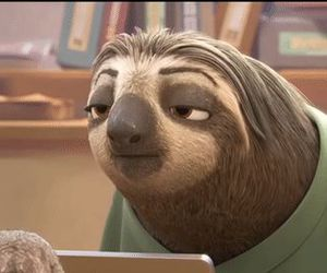 funny, sloth, and zootopia image