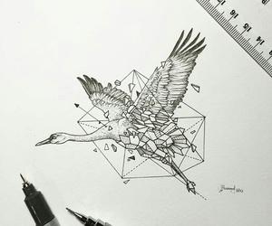 drawing, animal, and geometric image