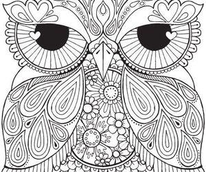 owl, creativity, and mandala image