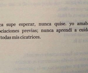 frases, book, and cicatrices image