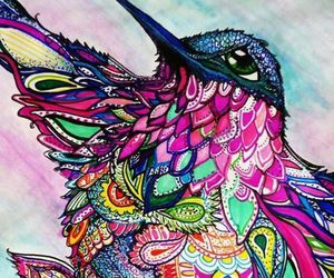 art, colors, and bird image