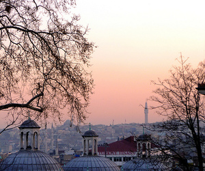 istanbul, sunset, and trees image