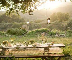 nature, garden, and picnic image