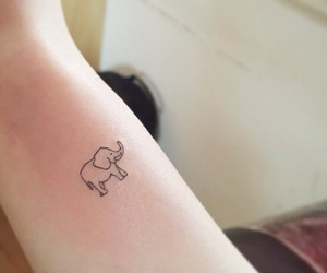 tattoo, elefante, and elephant image