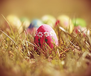 easter, grass, and egg image