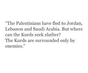 enemies, kurdish, and kurds image