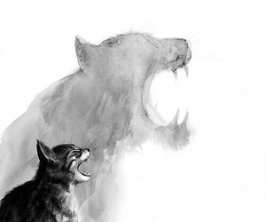 cat, tiger, and black and white image