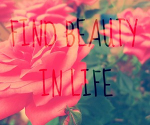 beautiful, flower, and quotes image
