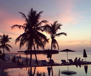 luxury, nature, and palm trees image