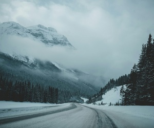 nature, road, and photo image