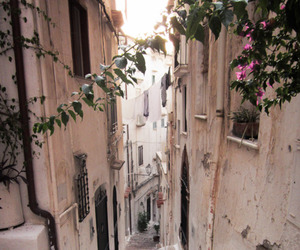street, flowers, and stairs image