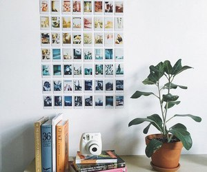 book, plants, and photo image