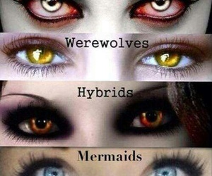 vampire, hybrid, and mermaid image