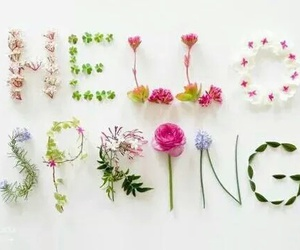 hello and spring! image
