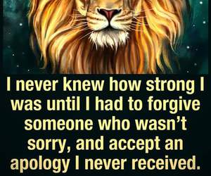 lion, sorry, and strong image