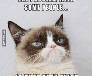 funny, cat, and people image