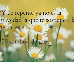 books, christian grey, and frases image