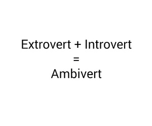hyper, introvert, and life image