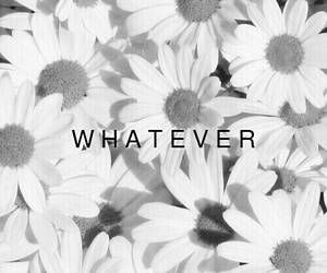 whatever, flowers, and black and white image