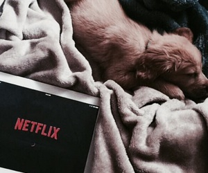 netflix, dog, and puppy image