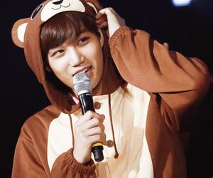 bear, costume, and exo image
