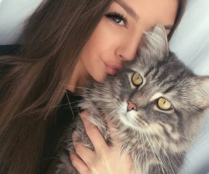 cat, girl, and beauty image