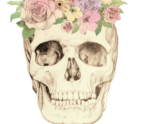 calavera, flores, and flowers image