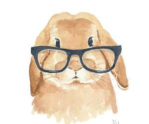 bunny, rabbit, and glasses image