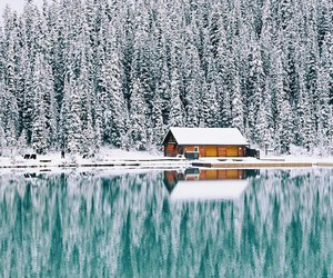 forest, house, and snow image