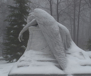 angel, pale, and snow image