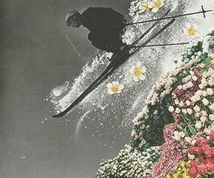 flowers, art, and Collage image