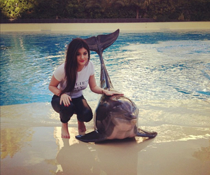 kylie jenner, dolphin, and summer image